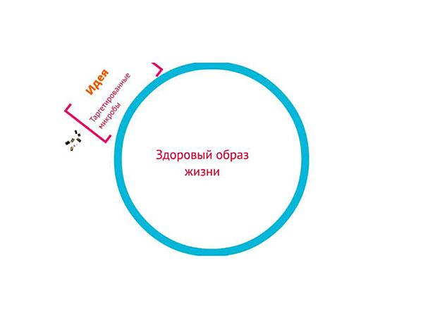 «Таргетированные микробы в борьбе за здоровый образ жизни» – команда НИЯУ МИФИ, г. Москва.