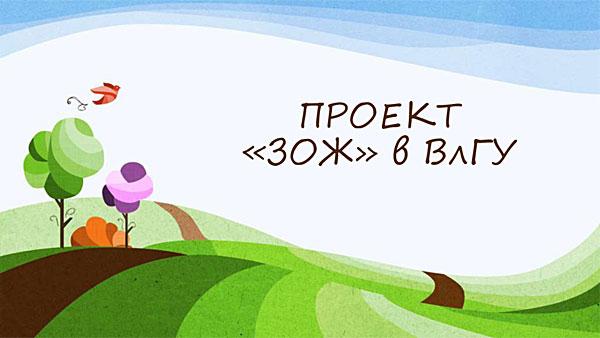 «ЗОЖ – здоровый образ жизни» – команда Владимирского государственного университета им. А.Г. и Н.Г. Столетовых, г. Владимир.